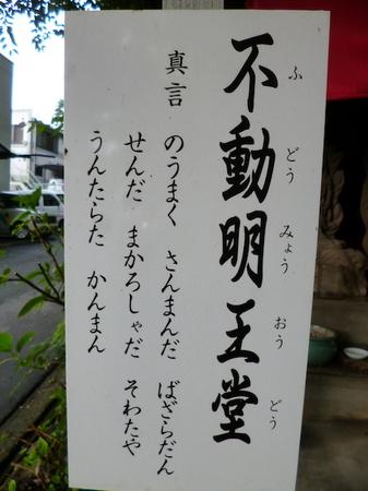 099サイクリング10.JPG