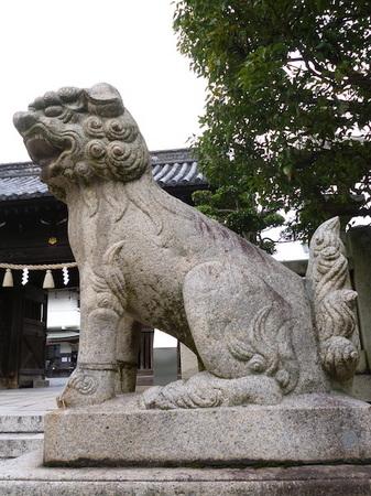 1116岡山12.JPG