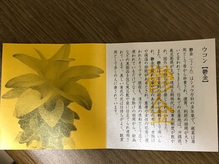 160827金毘羅さんお守り6.JPG