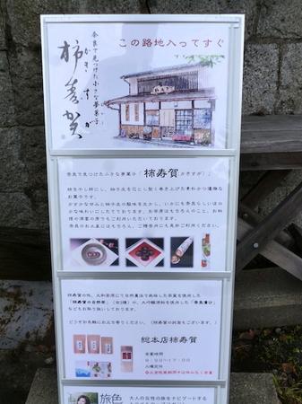 529柿寿賀4.JPG
