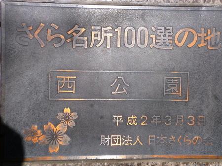571天神ー光雲神社19.JPG