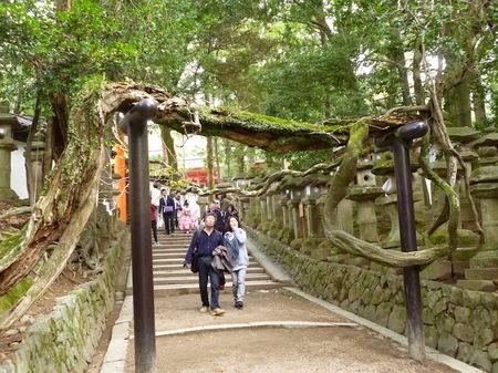 624奈良散歩1.JPG