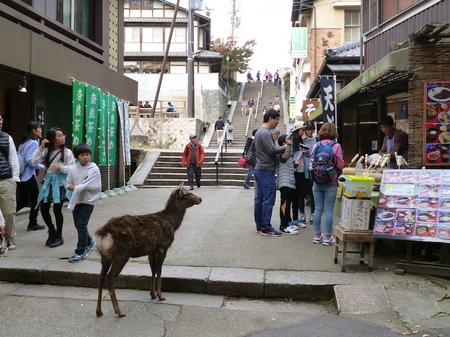 624奈良散歩10.JPG