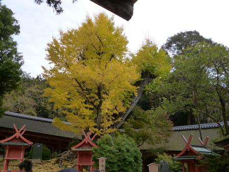 624奈良散歩4.JPG
