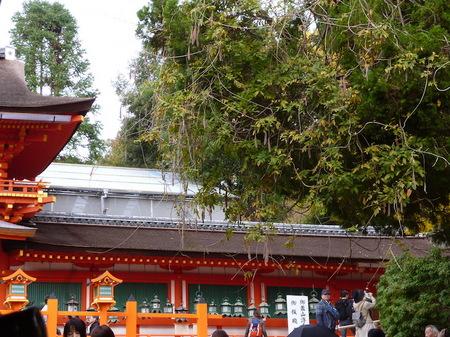 624奈良散歩5.JPG
