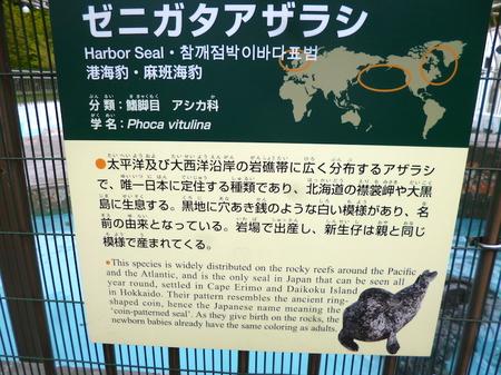 633円山動物園3.JPG