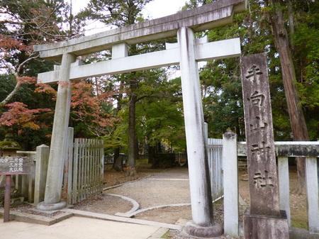 635奈良散歩2.JPG