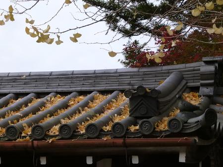 635奈良散歩4.JPG