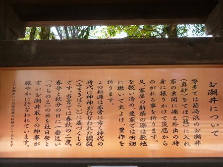 638筥崎宮17.JPG
