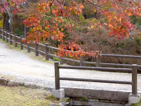 655奈良散歩4.JPG