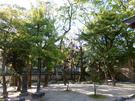 659筥崎宮3.JPG
