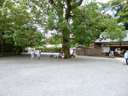 701金毘羅さん9.JPG
