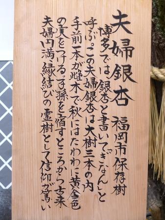 708櫛田神社10.JPG