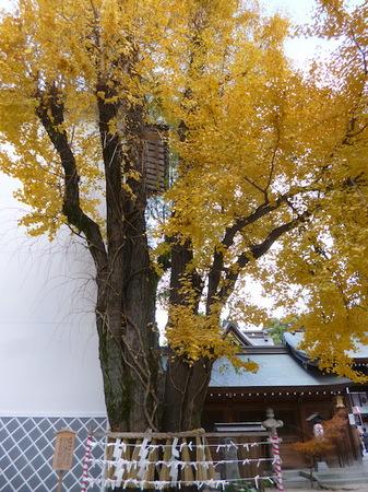 708櫛田神社11.JPG