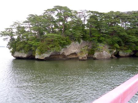 845雄島4ランチ福浦島9.JPG