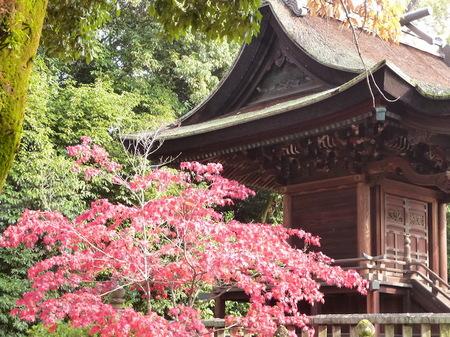 890阿智神社19.JPG