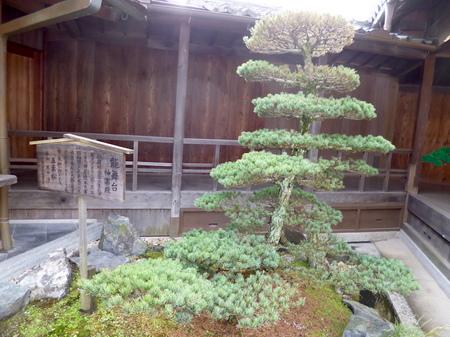 890阿智神社8.JPG