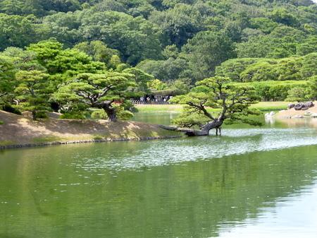 1004栗林公園6.JPG