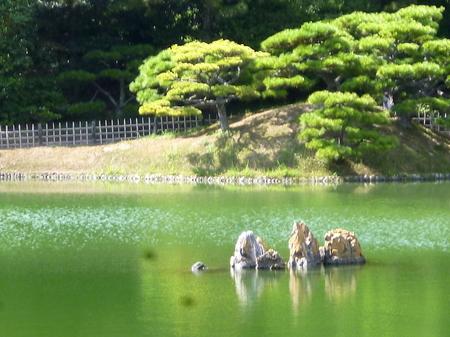 1014栗林公園7.JPG