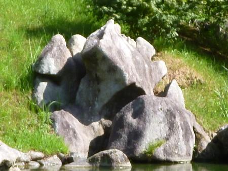 1026栗林公園9.JPG