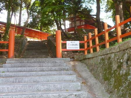 1048南蔵院・香椎宮18.JPG