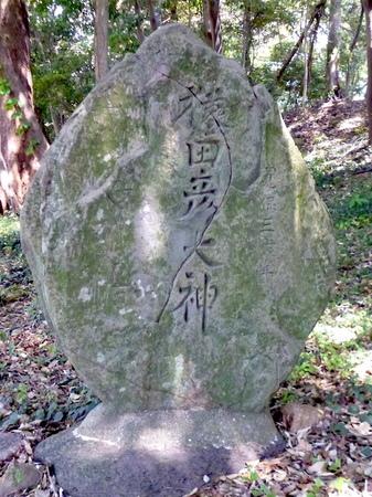 1048南蔵院・香椎宮19.JPG