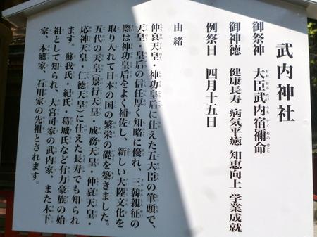 1048南蔵院・香椎宮20.JPG