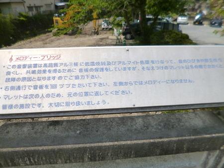 1048南蔵院・香椎宮6.JPG