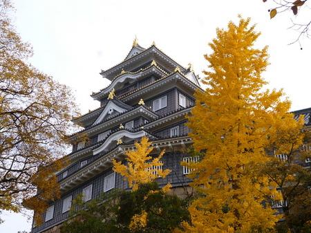 1069岡山17.JPG