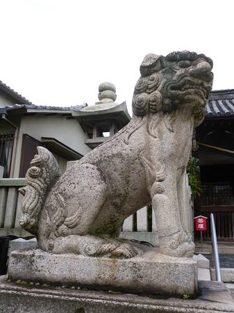 1116岡山11.JPG