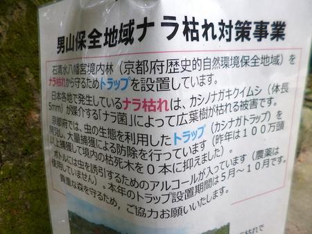 168石清水八幡宮7.JPG