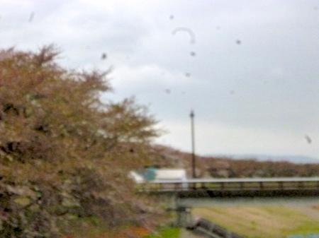 180405墓参り(岐阜)116.JPG