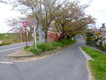 180405墓参り(岐阜)118.JPG
