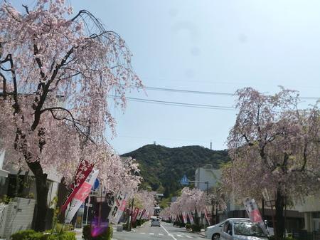 180405墓参り(岐阜)12.JPG