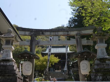 180405墓参り(岐阜)15.JPG