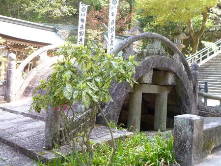180405墓参り(岐阜)18.JPG