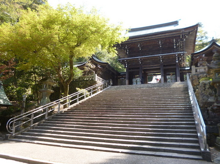 180405墓参り(岐阜)20.JPG