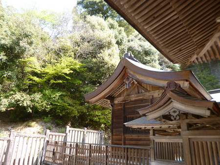 180405墓参り(岐阜)35.JPG