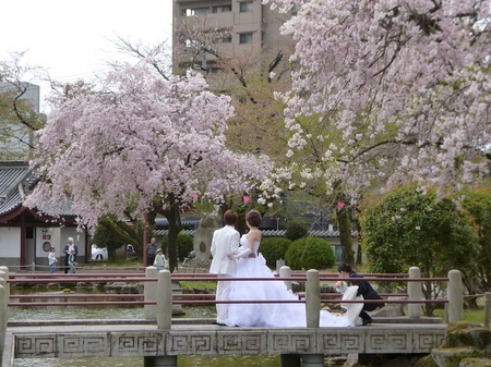 180405墓参り(岐阜)70.JPG