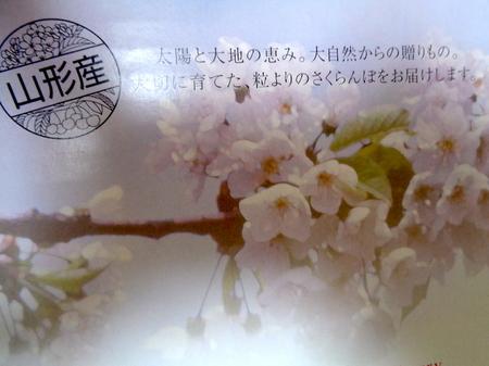 180619さくらんぼ月山錦2.JPG