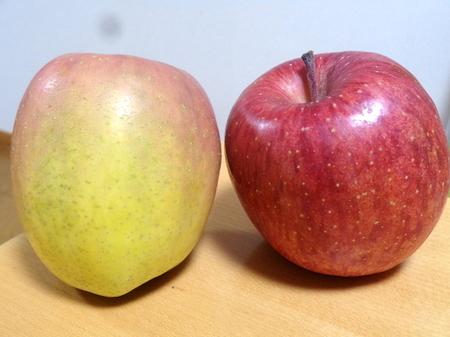 190130インドリンゴ1.JPG