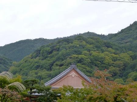 194天龍寺10.JPG
