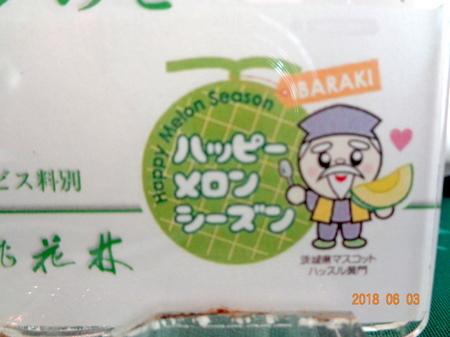 270桃花林7.JPG