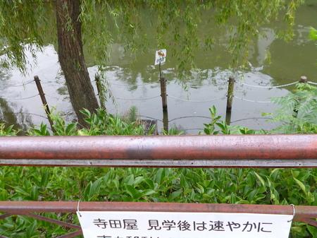 316寺田屋〜伊丹6.JPG