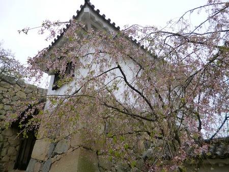 325姫路城2.JPG
