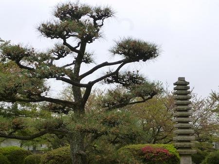 325姫路城7.JPG