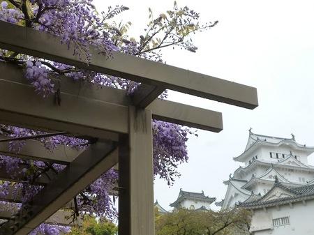 335姫路城8.JPG