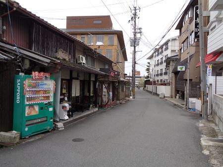 544柿寿賀4.JPG
