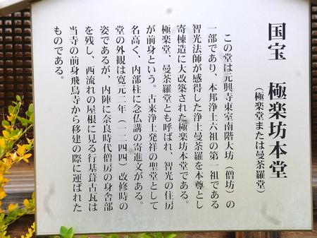 604奈良散歩1.JPG