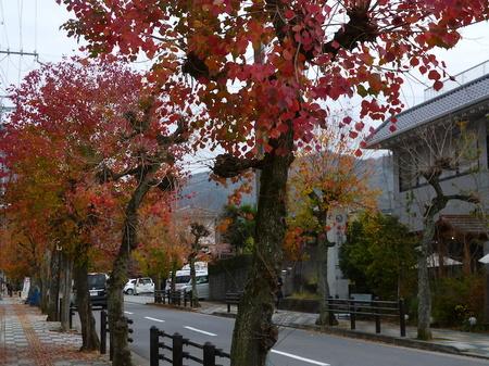 604奈良散歩8.JPG